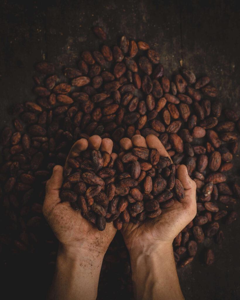 Mijn ervaring met een cacao ceremonie